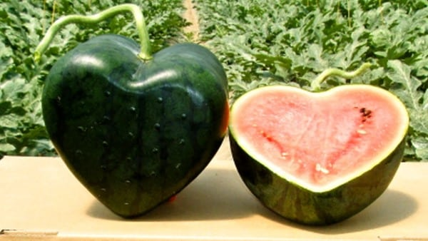 Love Shaped Watermelon