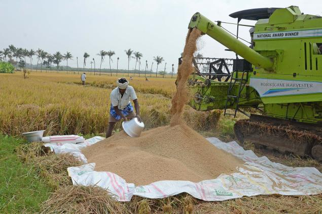 Paddy Harvesting Using Machine