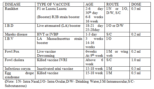 Poultry Vaccination schedule