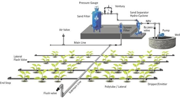 Drip Irrigation System.