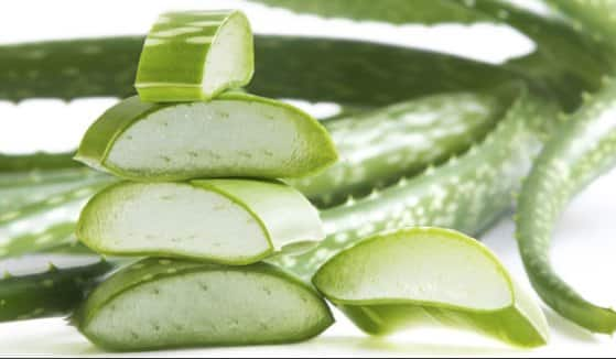 Health Benefits Of Aloe Vera.