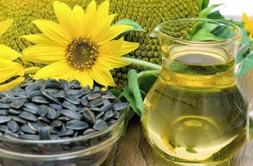 Health Benefits of Sunflower.