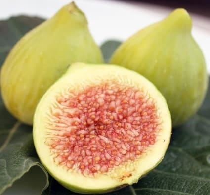 Health Benefits of Fig.