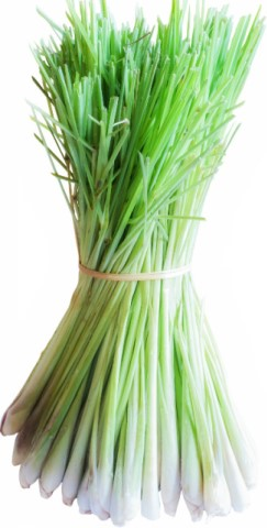 Lemongrass Health Benefits.
