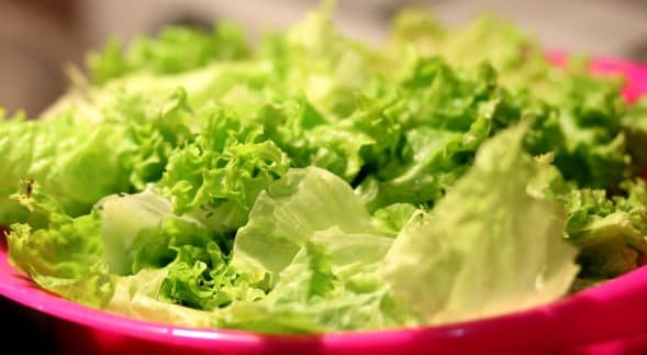 Health Benefits of Lettuce.
