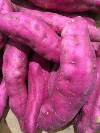 Pink Sweet Potato.