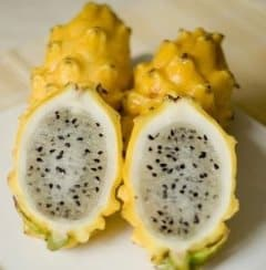 Yellow Dragon Fruit.