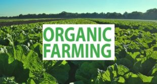 Organic Agriculture.